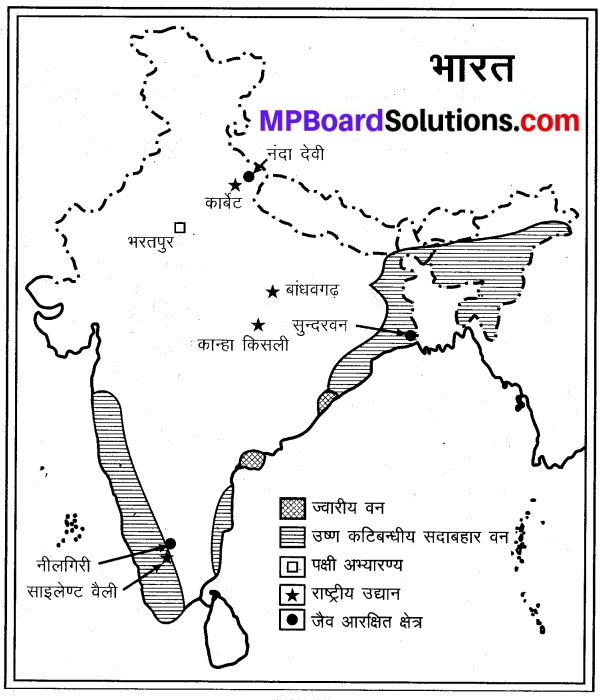 MP Board Class 9th Social Science Solutions Chapter 8 मानचित्र पठन एवं अंकन - 4