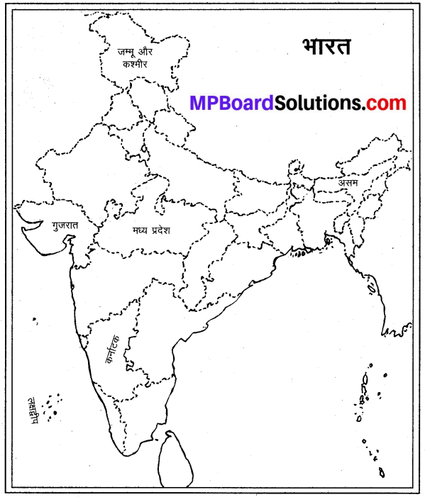 MP Board Class 9th Social Science Solutions Chapter 8 मानचित्र पठन एवं अंकन - 8