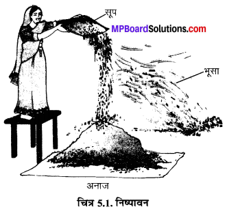 MP Board Class 6th Science Solutions Chapter 5 पदार्थों का पृथक्करण 1