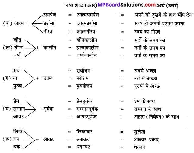 MP Board Class 7th Hindi Bhasha Bharti Solutions Chapter 16 नरबदी 2