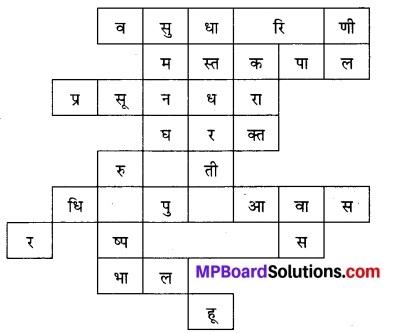 Class 7 Hindi कुछ और भी दूँ Chhattisgarh State Board Solutions