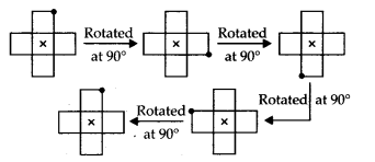 MP Board Class 7th Maths Solutions Chapter 14 Symmetry Ex 14.2 13