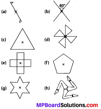 MP Board Class 7th Maths Solutions Chapter 14 Symmetry Ex 14.2 8