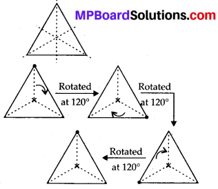 MP Board Class 7th Maths Solutions Chapter 14 Symmetry Ex 14.3 1