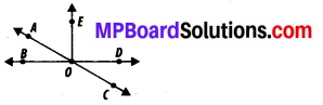 MP Board Class 7th Maths Solutions Chapter 5 Lines and Angles Ex 5.1 8