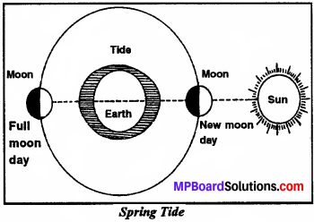 MP Board Class 7th Social Science Solutions Chapter 21 Sea Movements-1