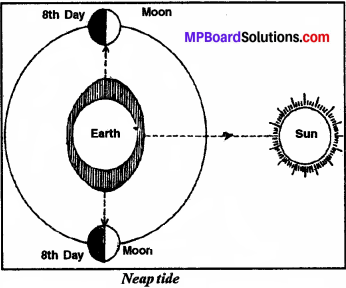 MP Board Class 7th Social Science Solutions Chapter 21 Sea Movements-2