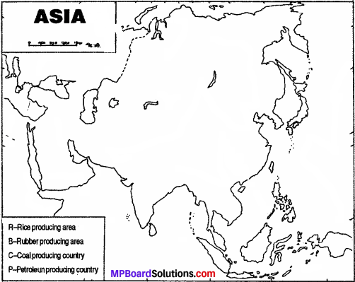 MP Board Class 7th Social Science Solutions Chapter 29 Asia Economic Resources