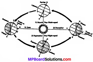 Mp Board Solution Class 7 Social Science
