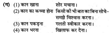 MP Board Class 8th Hindi Bhasha Bharti Solutions Chapter 19 बहादुर बेटा 2