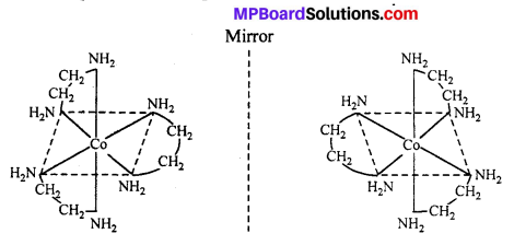 MP Board Class 12th Chemistry Solutions Chapter 9 Coordination Compounds 15