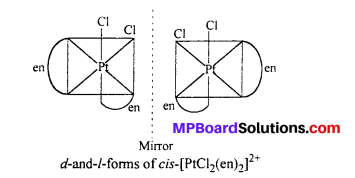 MP Board Class 12th Chemistry Solutions Chapter 9 Coordination Compounds 20