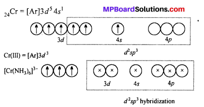 MP Board Class 12th Chemistry Solutions Chapter 9 Coordination Compounds 25