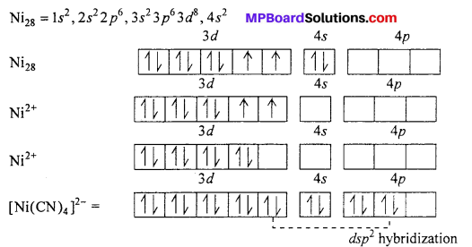 MP Board Class 12th Chemistry Solutions Chapter 9 Coordination Compounds 51