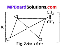 MP Board Class 12th Chemistry Solutions Chapter 9 Coordination Compounds 53