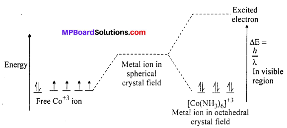 MP Board Class 12th Chemistry Solutions Chapter 9 Coordination Compounds 73