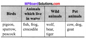 Anita Feeds Appu Question Answer MP Board Class 7th English Chapter 4