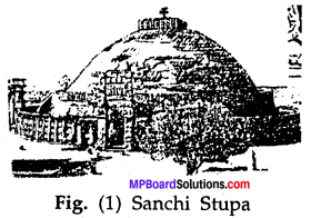 MP Board Class 7th Special English Chapter 18 The Great Pyramid 6