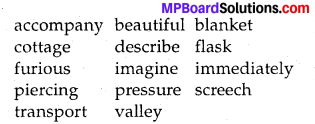 MP Board Class 8th Special English Revision Exercises 2 2