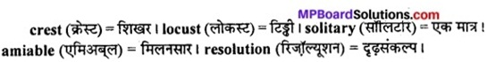MP Board Class 11th English The Spectrum Solutions Chapter 11 A Letter to God 1