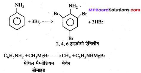 MP Board Class 12th Chemistry Solutions Chapter 13 ऐमीन - 133