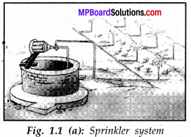 Mp Board Class 8 Science Solution