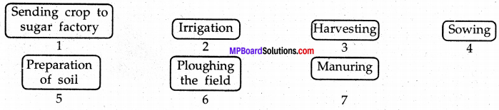 Mp Board Class 8 Science Solution English Medium