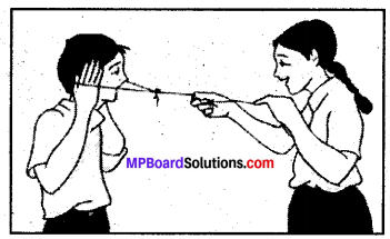 MP Board Class 8th Science Solutions Chapter 13 Sound 2