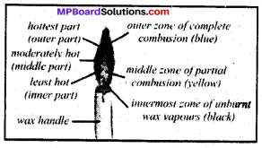 Mp Board Class 8 Science Solution Chapter 6