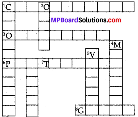 Mp Board Class 8 Chapter 8
