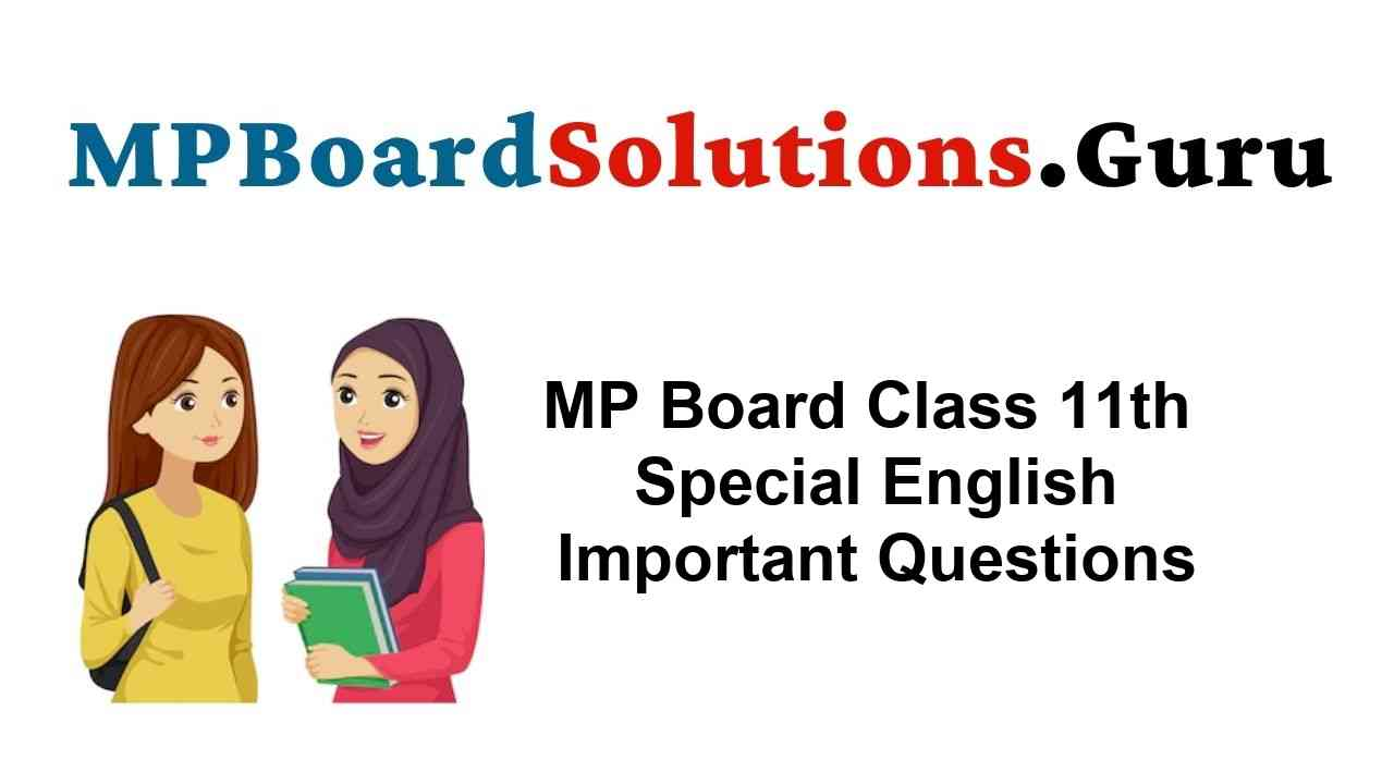 MP Board Class 11th Special English Important Questions with Answers