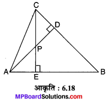 MP Board Class 10th Maths Solutions Chapter 6 त्रिभुज Ex 6.3 14