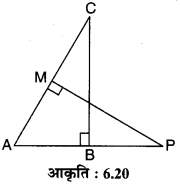 MP Board Class 10th Maths Solutions Chapter 6 त्रिभुज Ex 6.3 16
