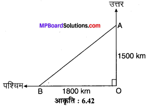 MP Board Class 10th Maths Solutions Chapter 6 त्रिभुज Ex 6.5 10