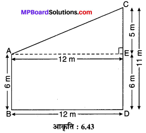 MP Board Class 10th Maths Solutions Chapter 6 त्रिभुज Ex 6.5 11