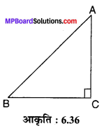 MP Board Class 10th Maths Solutions Chapter 6 त्रिभुज Ex 6.5 4