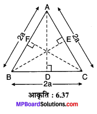 MP Board Class 10th Maths Solutions Chapter 6 त्रिभुज Ex 6.5 5