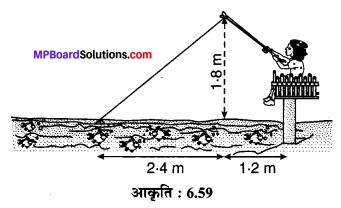 MP Board Class 10th Maths Solutions Chapter 6 त्रिभुज Ex 6.6 13