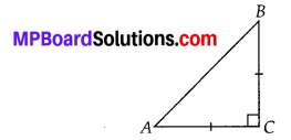 MP Board Class 10th Maths Solutions Chapter 6 Triangles Ex 6.5 5
