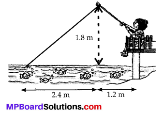 MP Board Class 10th Maths Solutions Chapter 6 Triangles Ex 6.6 25