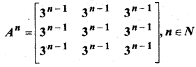 MP Board Class 12th Maths Solutions Chapter 3 आव्यूह विविध प्रश्नावली 4