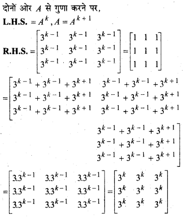 MP Board Class 12th Maths Solutions Chapter 3 आव्यूह विविध प्रश्नावली 6