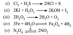 MP Board Class 10th Science Solutions Chapter 1 Chemical Reactions and Equations 13