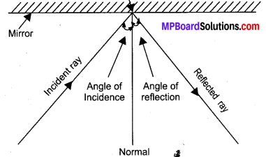 MP Board Class 10th Science Solutions Chapter 10 Light Reflection and Refraction 20