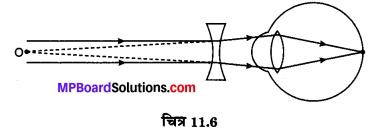 MP Board Class 10th Science Solutions Chapter 11 मानव नेत्र एवं रंगबिरंगा संसार 12