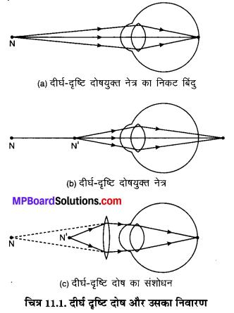MP Board Class 10th Science Solutions Chapter 11 मानव नेत्र एवं रंगबिरंगा संसार 4