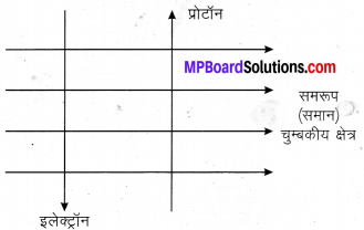 MP Board Class 10th Science Solutions Chapter 13 विद्युत धारा का चुम्बकीय प्रभाव 10