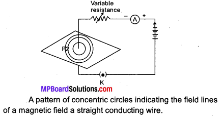 MP Board Class 10th Science Solutions Chapter 13 Magnetic Effects of Electric Current 8