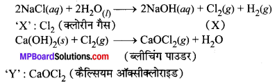 MP Board Class 10th Science Solutions Chapter 2 अम्ल, क्षारक एवं लवण 13