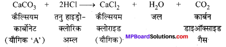 MP Board Class 10th Science Solutions Chapter 2 अम्ल, क्षारक एवं लवण 2
